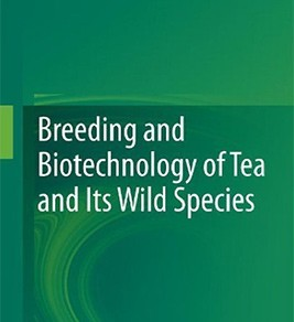 Breeding and Biotechnology of Tea