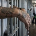 Man with Tattoos hanging arms over prison cell bars